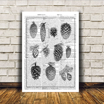 Pine cones poster Nature art Dictionary print Modern decor RTA40