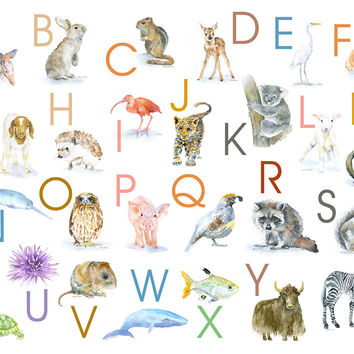 Animals Alphabet Poster - Landscape