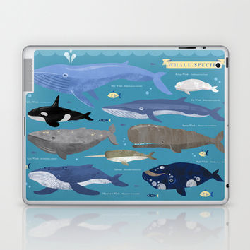 Whale Species Laptop & iPad Skin by Emily Golden
