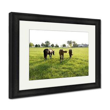 Framed Print, Kentucky Thoroughbreds
