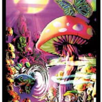MAGIC VALLEY FLOCKED BLACKLIGHT POSTER - TRIPPY MUSHROOM TRIP FISH SHROOMS ALICE