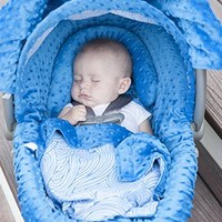 Noa Carseat Canopy Whole Caboodle, Carseat Cover