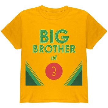 Crayon Big Brother of 3 Youth T Shirt