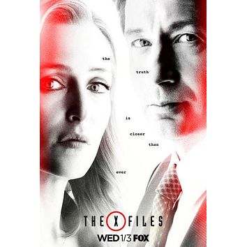 The X Files Poster 16in x24in