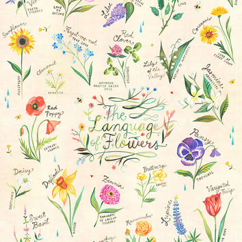 The Language of Flowers Art Print | Watercolor Hand Lettering | Botanical Poster | Gardening Chart | Katie Daisy | 8x10 | 11x14