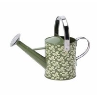 Small Green Leaf Watering Can - Garden from the gifted penguin UK
