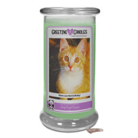 Have A Purrfect Birthday! | Jewelry Greeting Candle