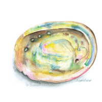 Abalone Seashell Watercolor Painting Giclee Print 8 x 10
