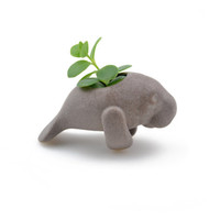 Small cute manatee planter- ceramic planter, animal planter - made in Brazil