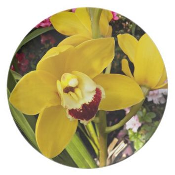 Yellow Boat Orchid Floral Plate