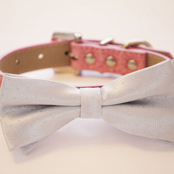 Silver Dog Bow Tie collar
