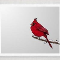 Snowy Red Cardinal - Illustrated Pr.. on Luulla