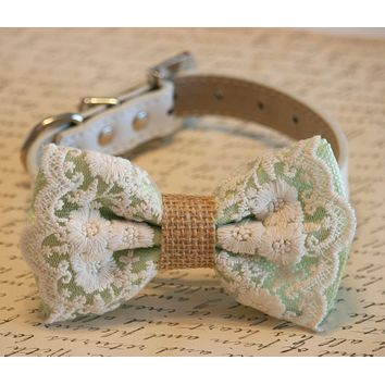 Pistachio Dog Bow Tie collar, Lace and Burlap