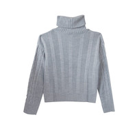 bulkyknit turtleneck