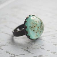Real Flower Ring Resin Jewelry 05 Turquoise Mint Jade Green Queen Anne's Lace Botanical Specimen Antique Adjustable Rustic Natural Woodland