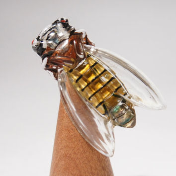 Cicada Brooch - Lucite Plastic - France French Pin - Reverse Painted - Cigale Bug Locust - Lucky & Long Life - 1940's