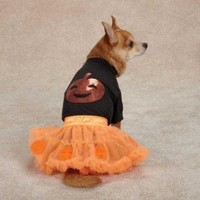 Zack & Zoey Pumpkin Costume Set for Pets, Medium, Orange