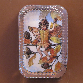 Autumn Beechnut Flower Fairy Heirloom Rectangle Glass Paperweight Cicely Mary Barker Home Decor