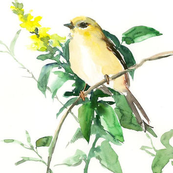 Bird artwork, American Goldfinch female, original watercolor art, 12 X 9 in, olive green brown wall art