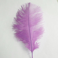 Ostrich Feather Decorative Centerpiece, 15-inch, Lavender