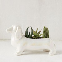 Dachshund Planter | Urban Outfitters