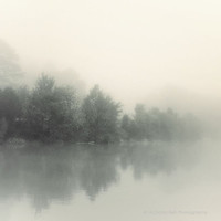 landscape photography, fog, foggy, nature, serene, coastal, tranquil, Lakeshore in Fog