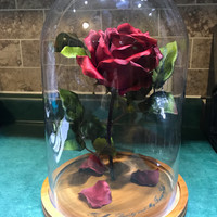 Beauty and the Beast Rose (Large)