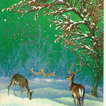 Deers in winter forest - Vintage Russian Postcard 1985