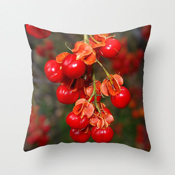 Bittersweet throw pillow cover, fall color, autumn garden, orange, scarlet, red, nature photograph, living room, bedroom, home decor