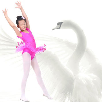 Zehui Style 3-7Y Child Girls Traning Gymnastics Ballet Tutu Leotard Short Sleeve Dance Dress