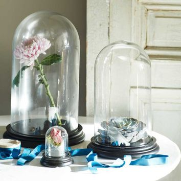 Glass Display Bell Jars