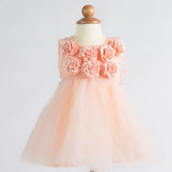 Microbe by Miss Grant - Baby Girl Flower Tulle Dress, Peach