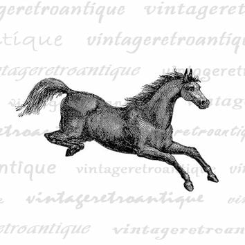 Digital Jumping Horse Printable Image Graphic Download Artwork Antique Clip Art Jpg Png Eps  HQ 300dpi No.2278