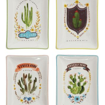 Cactus Dish By Creative Coop