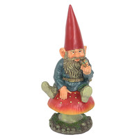 Adam with Butterfly Garden Gnome