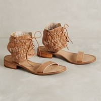 Latigo Rose Sandals