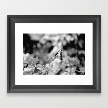 Butterflies Are Free Framed Art Print by Theresa Campbell D'August Art