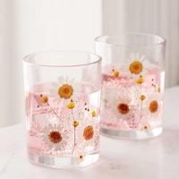 Pressed Daisy Glass - Set Of 2 | Urban Outfitters