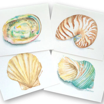 Watercolor Seashell Note Cards Set of 8