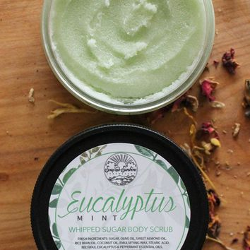 Eucalyptus Mint - Whipped Sugar Scrub