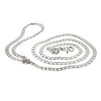 Rodeo Drive Collection Metal Dog Leash