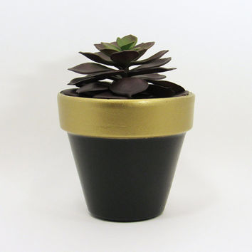 Terracotta Pot, Succulent Planter, Cute Planter, Small Pot, Gold Planter, Air Plant Holder, Indoor Planter, Succulent Pot, Black Pot