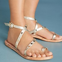 Beek Lorikeet Gladiator Sandals