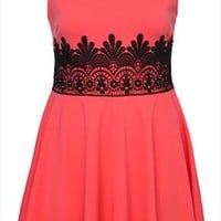 Coral Pink Skater Dress With Black Lace Waist Detail plus size 16,18,20,22,24,26,28,30,32