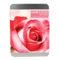 Name a Rose - A Unique Rose to Name & Grow