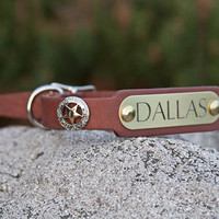 Texas Star Leather Collar