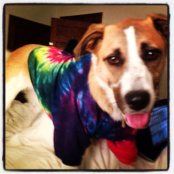 Tie-Dye Dog Shirt, Doggie Clothes