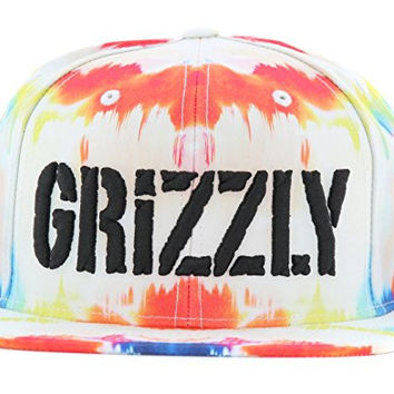 Grizzly Griptape Men's The Dye Stamp Snapback Hat-Multi