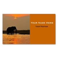 Elephant in Sunset Business Cards from Zazzle.com