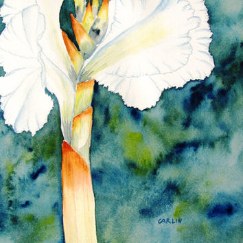 Original Watercolor Flower Painting, Floral, White Canna Lily Flower, 9x12, Watercolor Flower, Still Life Painting, Gifts for Her